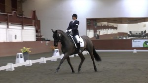 Greg at Regionals - Trot