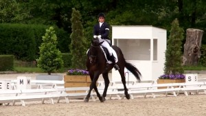 Nicky Greenhill riding Gregorian Chant at Roosendaal 2015 - Shoulder In