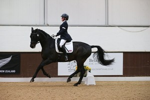 Canter at Bury Farm International